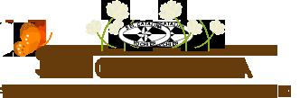 St.CATHERINE 学校法人 聖カタリナ学園 聖カタリナ幼稚園